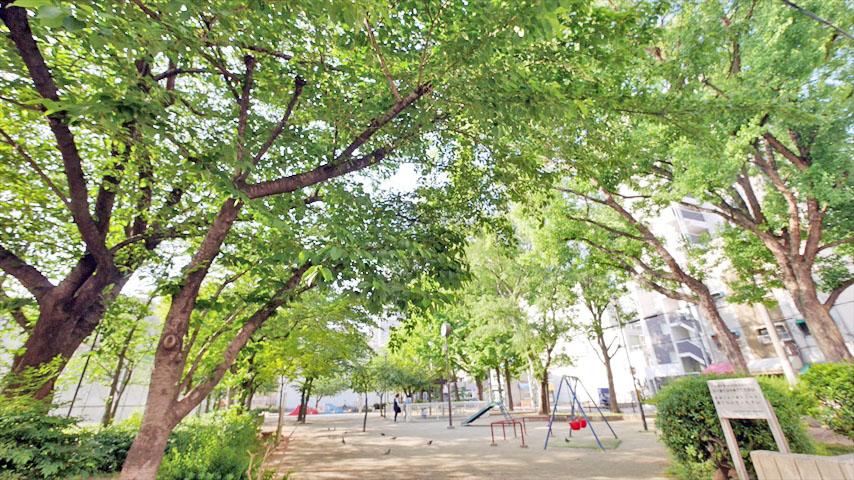 花乃井公園